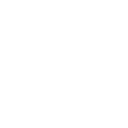 icon of consumer